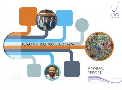 VAC-annual-report-cover-2012-13